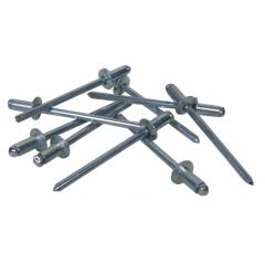 Galvanized Steel Rivets